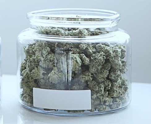 bote de cogollos de cannabis