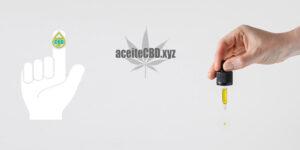 cbd y diabetes-aceitecbd.xyz